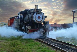 311973_steam_train