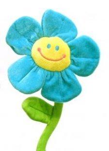 Flower_soft_play_250199_l