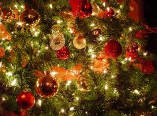 Xmas_christmas_christmas_227801_l