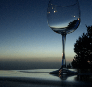 Wine_glass_toast_612541_h